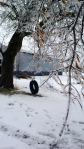 iced tree and tire swing
